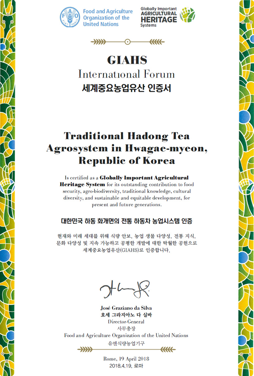 세계중요농업유산 인증서- Food and Agriculture Organization of the United Nations Globally Important AGRICULTURAL HERITAGE Systems  GIAHS Interneatinonal Forum 세계중요농업유산 인증서  Traditional Hadong Tea Agrosystem in Hwagae-myeon, Republic of Korea Is certified as a Globally Important AGRICULTURAL HERITAGE Systems for its outstanding contribution to food security, agro-biodiversity, traditinonal knowledge, cultural disversity, and sustainable and equitable development, for present and future grnerations.  대한민국 하동 화개면의 전통 하동차 농업시스템인증 현재와 미래 세대를 위해 식량 안보, 농업 생물 다양성, 전통지식, 문화다양성 및 지속가능하고 공평한 개발에 대한 탁월한 공헌으로 세계중요농업유산(GIAHS)로 인증합니다.   José Graziano da Silva 호세 그라지아노 다 실바 Director-Cerneral 사무총장 Food and Agriculture Organization of the United Nations 유엔식량농업기구 Rome, 19 April 2018 / 2018.4.19 로마
